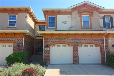 Bloomingdale Condo/Townhouse For Sale: 313 Veneto Street