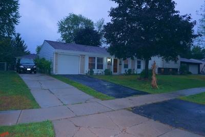 Hanover Park Single Family Home For Sale: 1512 Olivia Lane