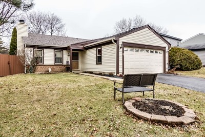 Roselle Single Family Home Contingent: 801 Rodenburg Road