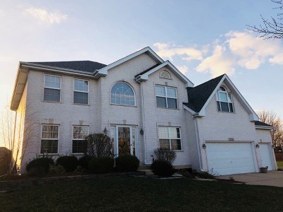 Plainfield Single Family Home For Sale: 13235 Brooklands Lane