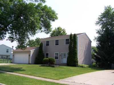 Schaumburg Single Family Home For Sale: 2111 Briar Hill Drive