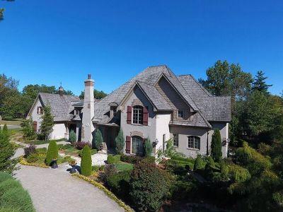 Homer Glen Single Family Home For Sale: 16429 South Alberta Court