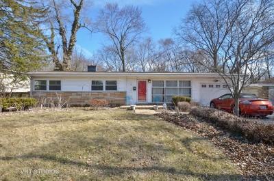 Deerfield Single Family Home For Sale: 517 Mallard Lane