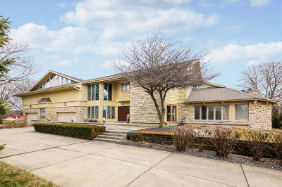 Downers Grove Single Family Home For Sale: 8401 Cessna Lane