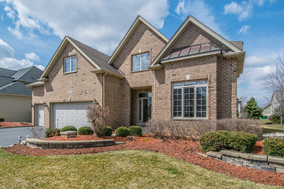 Plainfield Single Family Home For Sale: 12800 Barrow Lane