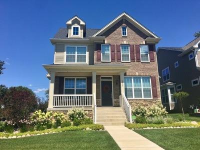 Downers Grove Single Family Home For Sale: 2538 Burlington Avenue