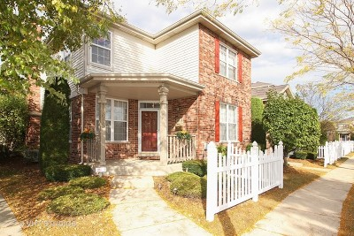 Tinley Park Condo/Townhouse Re-Activated: 18619 West Point Drive