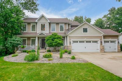 Wheaton Single Family Home For Sale: 1n003 Richard Avenue