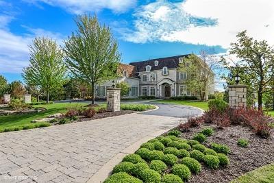 Barrington Single Family Home For Sale: 225 Knox Court