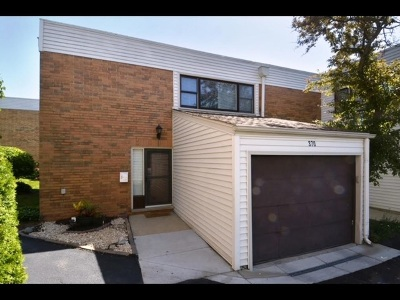 Hoffman Estates Condo/Townhouse For Sale: 370 Willow Tree Court