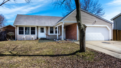 Bolingbrook Single Family Home For Sale: 214 Shawnee Drive