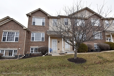 Elburn Condo/Townhouse For Sale: 673 East Willow Street