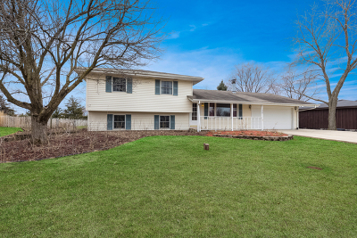 New Lenox Single Family Home For Sale: 1408 Briarcliff Drive