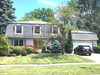 Libertyville Single Family Home For Sale: 902 Wexford Court
