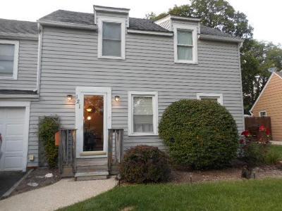 New Lenox Single Family Home For Sale: 121 Ash Street