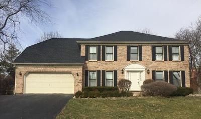 Lisle Single Family Home For Sale: 6056 Angel Lane