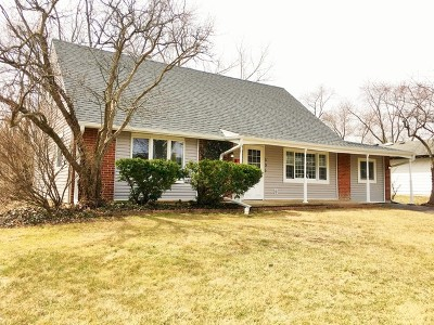 Hoffman Estates Single Family Home For Sale: 505 Northview Lane