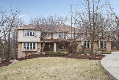 Orland Park Single Family Home For Sale: 49 Silo Ridge Road East
