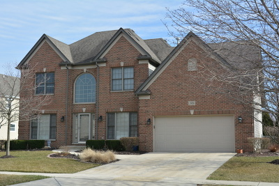 Joliet Single Family Home For Sale: 3916 Sierra Rose Circle