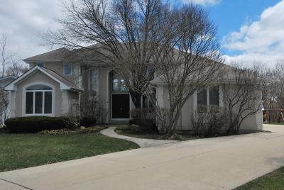 Buffalo Grove Single Family Home For Sale: 413 Marvins Way