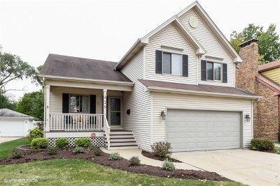 Lombard Single Family Home For Sale: 429 East Maple Street