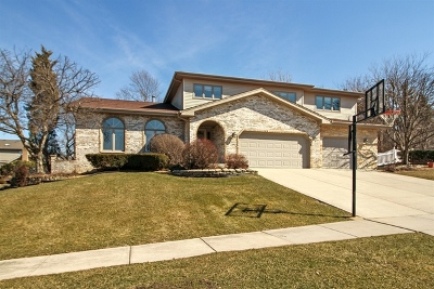 Orland Park Single Family Home For Sale: 16653 Orange Avenue