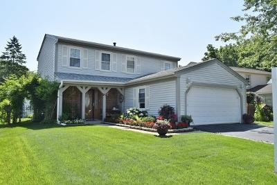 Roselle Single Family Home For Sale: 681 Middleton Drive