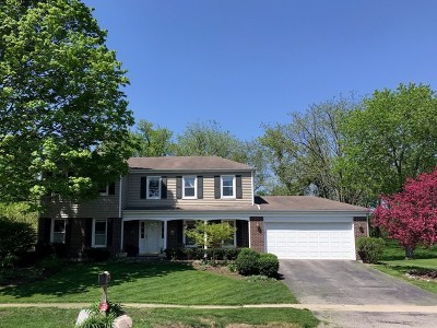 Libertyville Single Family Home For Sale: 623 Ridgewood Lane