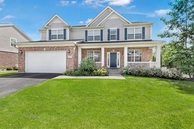 Palatine Single Family Home For Sale: 779 South Ravinia Circle
