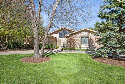 Homer Glen Single Family Home For Sale: 15522 Hawk Haven Road