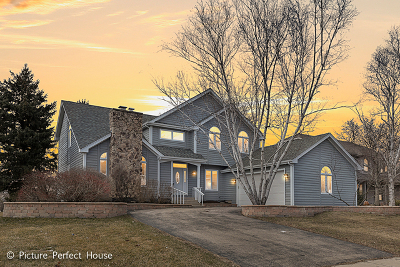 Naperville Single Family Home For Sale: 2533 Braddock Drive