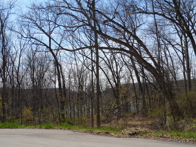 Ogle County Residential Lots & Land For Sale: 000 Chinquapin Drive