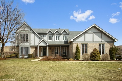 Schaumburg Single Family Home For Sale: 1536 Burberry Lane