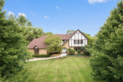 Lemont Single Family Home For Sale: 13208 Red Drive