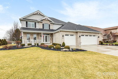 Palos Park Single Family Home For Sale: 13060 Holmes Drive