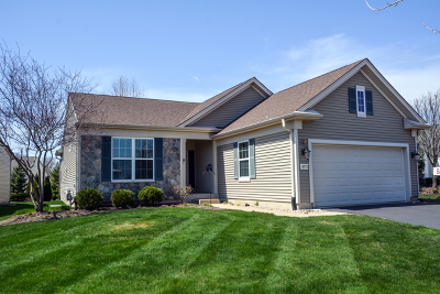 Huntley Single Family Home For Sale: 14173 Redmond Drive