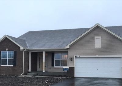 Joliet Single Family Home For Sale: 1902 Wellington Drive