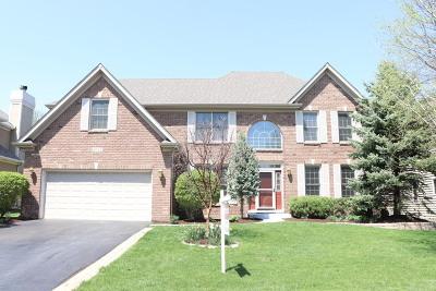 Naperville Single Family Home For Sale: 2611 Rutland Road