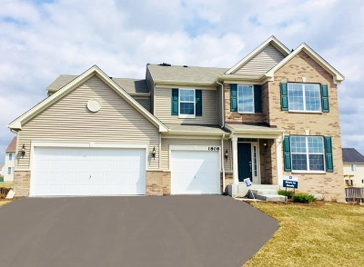 Joliet Single Family Home For Sale: 1900 Wellington Drive