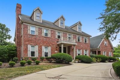 Burr Ridge Single Family Home For Sale: 2 Erin Lane