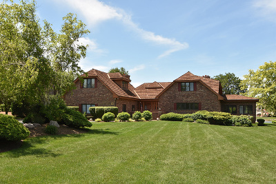 Orland Park Single Family Home For Sale: 84 Windmill Road