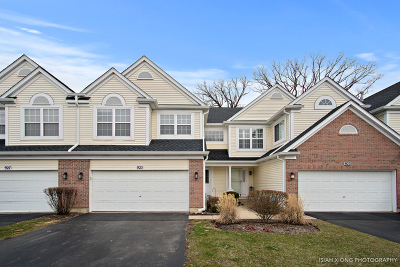 West Chicago Condo/Townhouse For Sale: 925 Ainsley Drive