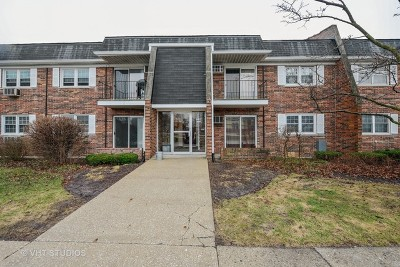 Downers Grove Condo/Townhouse For Sale: 2411 Ogden Avenue #7