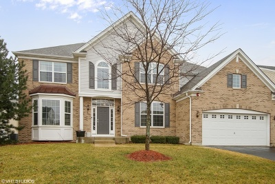 Hoffman Estates Single Family Home For Sale: 5887 North Betty Gloyd Drive