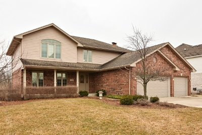 Frankfort Single Family Home For Sale: 21484 English Circle