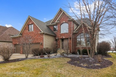 Plainfield Single Family Home For Sale: 11659 Millennium Parkway