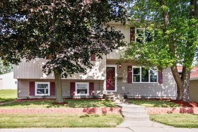 Lemont Single Family Home For Sale: 715 Ledochowski Street