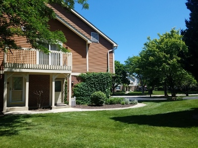 Lisle Condo/Townhouse For Sale: 2772 Weeping Willow Drive #D