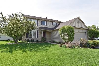 Montgomery Single Family Home For Sale: 3031 Shetland Lane