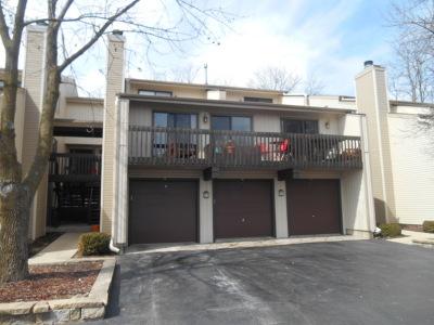 Fox Lake Condo/Townhouse For Sale: 70 White Oaks Road #70